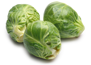 Photo of sprouts